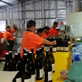 Wine labelling for See Saw wines